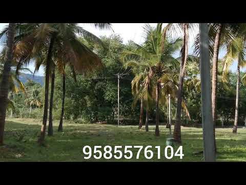 Farm land property for sale near periyanaickenpalayam Coimbatore