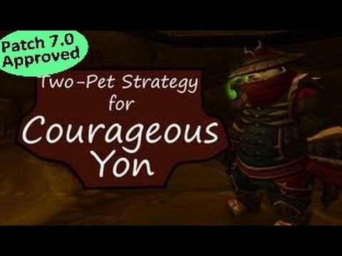 Courageous Yon: WoW Pet Battle Powerlevel Guide 7.0 +