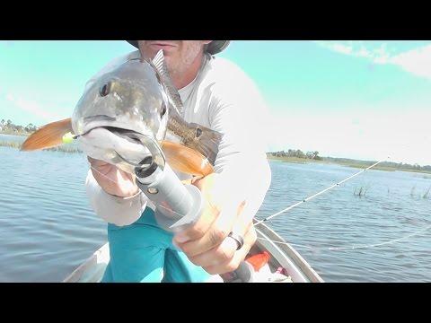 Redfish Action - Jacksonville Florida