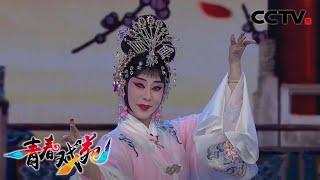 《青春戏苑》 20200407 京韵芬芳| CCTV戏曲