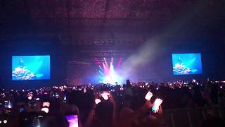 190120 CLARITY COVER BY JISOO - BLACKPINK 2019 WORLD TOUR IN YOUR AREA JAKARTA