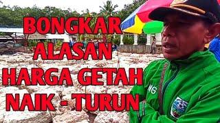 Download GETAH MINGGUAN 10.600  TERNYATA ALASAN HARGA GETAH KADANG MEROKET DAN TERJUN SEPERTI INI