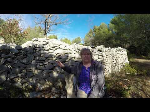 Ausflug zur Pestmauer