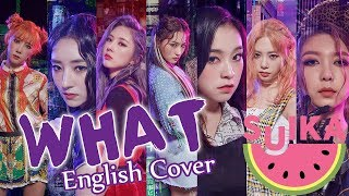 Dreamcatcher - What (English Cover)