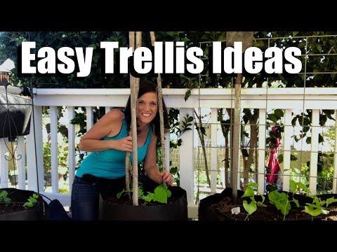 Easy, Inexpensive, DIY, Trellis Ideas, Growing Vertically // Small Space Garden Series #3