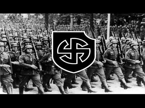 К. Залесский. Дивизия СС Викинг