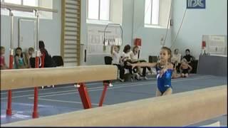 Соревнования по спортивной гимнастике проходят в Вологде