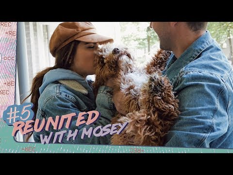 Real Life Daily  Reunited With Mosey  Episode 5
