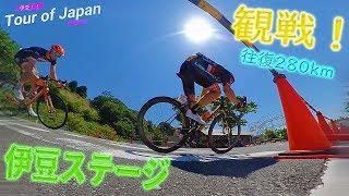 【往復280km】ツアー・オブ・ジャパン!伊豆ステージを見に行こう!!