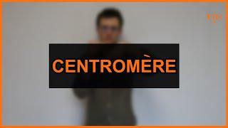 Biologie - Centromère