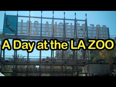 A Day at the LA Zoo