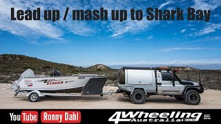 Lead up / mash up to Shark Bay
