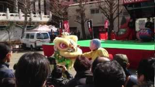 中国獅子舞 春節娯楽表演 2013年 山下町公園 横浜中華街