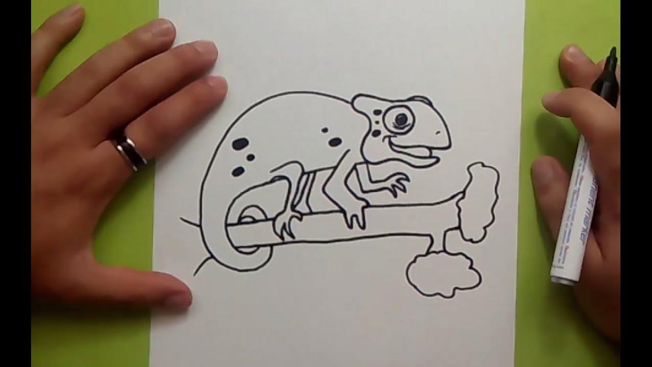 Como dibujar un camaleon paso a paso   How to draw a chameleon - YouTube