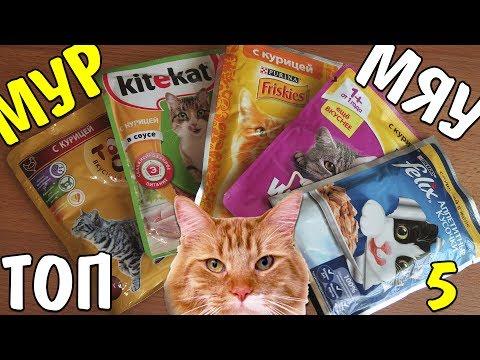 Вопрос: Как приготовить сырой корм для кошек?
