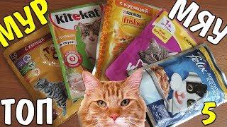 видео консервы для кошек