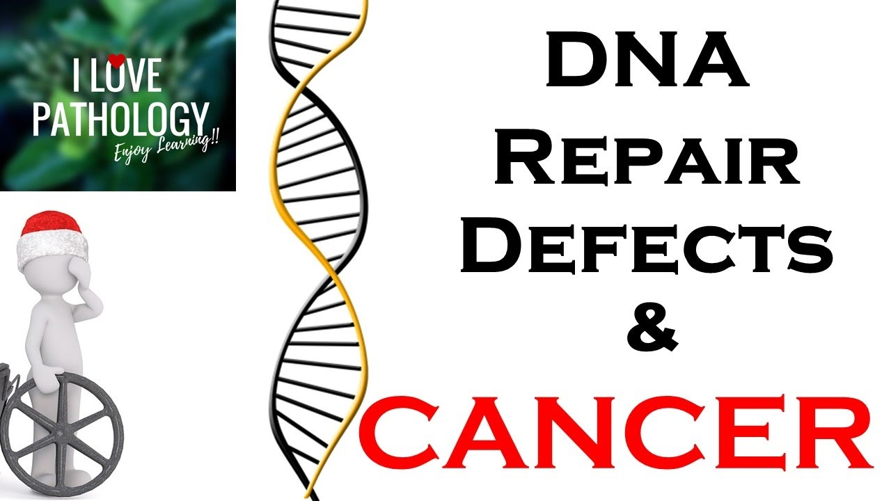 DEFECTS IN DNA REPAIR, DNA repair genes & Associated Cancers