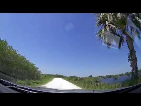 Blackpoint Wildlife Drive, Merritt Island, Florida