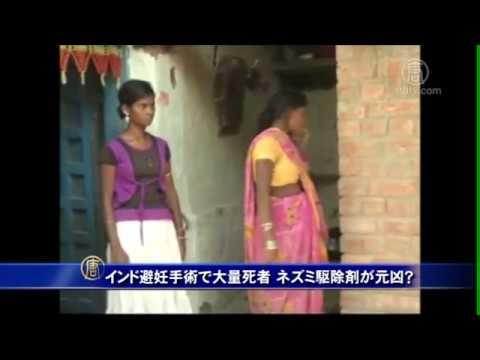 インド避妊手術で大量死者 ネズミ駆除剤が元凶? 20141118