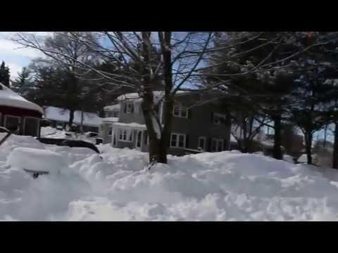 Awesome backyard dog snow maze for my hyper Chesapeake bay retriever