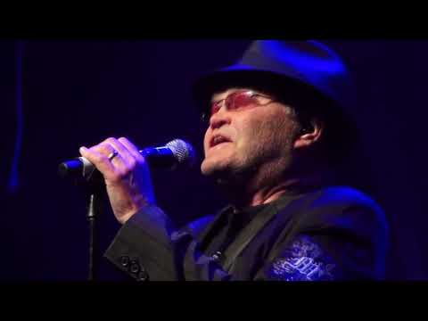 Micky Dolenz - Sugar Sugar (Live 2012)