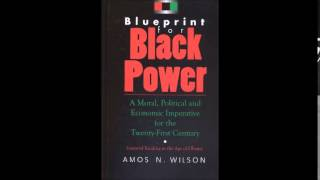 Amos N. Wilson | Developing the Undeveloped African Mind, Part 1