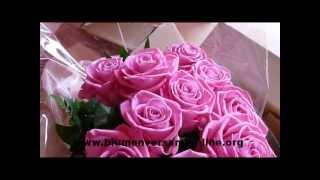 Blumenversand online - Floraprima - Blumen online bestellen
