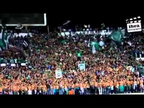 جمهور الرجاء البيضاوي المغربي يغني للجزائر وللخضر ...اخوة ولن تفرقنا الفتنة thumbnail