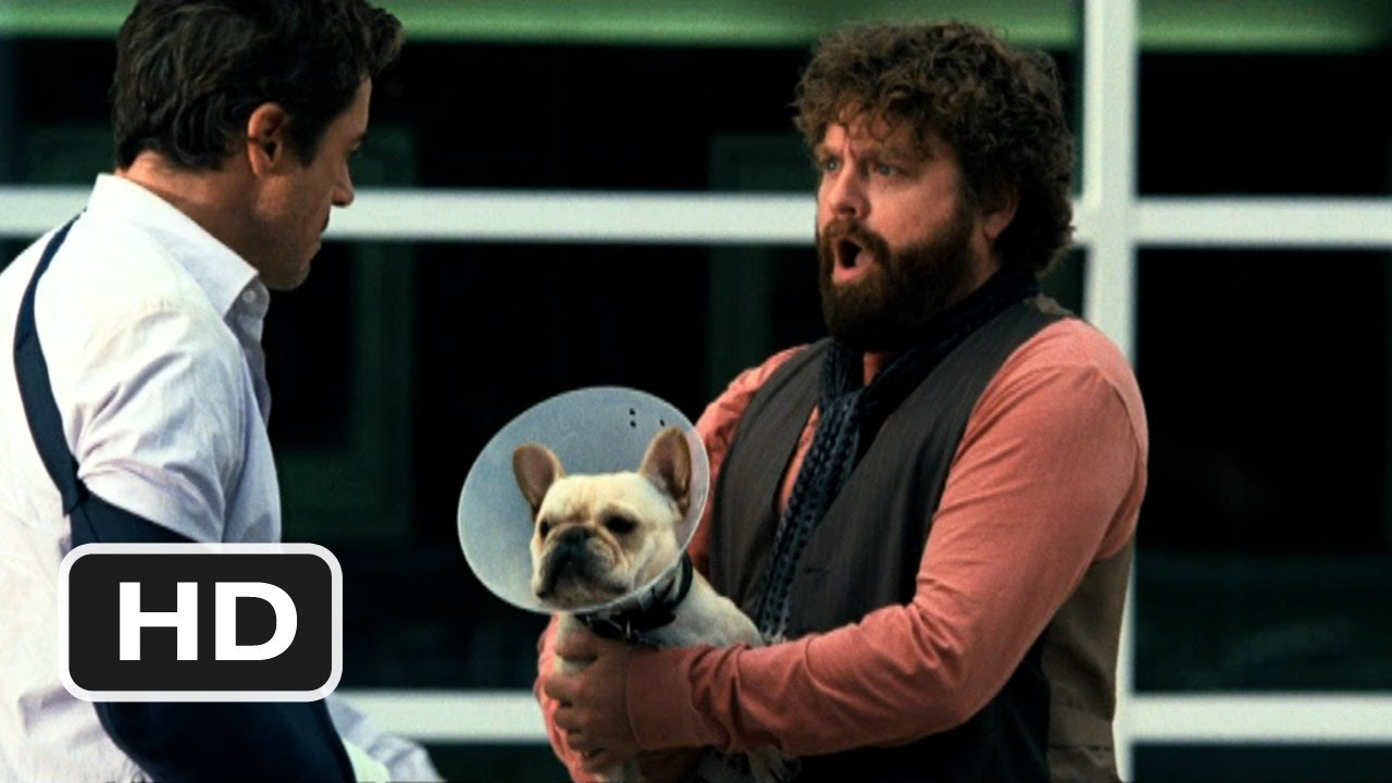 Due Date Official Trailer 2 2010 Hd Youtube