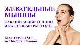 Жевательные мышцы. Как они меняют лицо и как с ними работать. Самомассаж лица