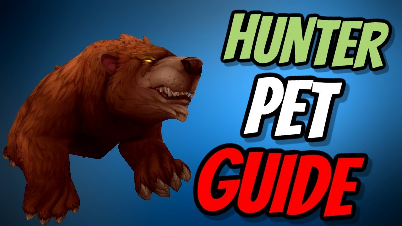 Hunter Pet Guide Which Pet Ferocity Tenacity Or Cunning World Of Warcraft Battle For Azeroth Youtube