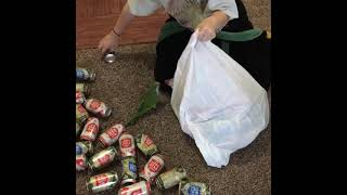 Angry Bird Ranting About Throwing Away Beer Cans