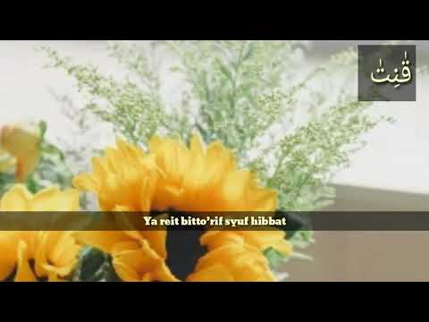 Story Wa Islami Keren 30 Detik L Sholawat
