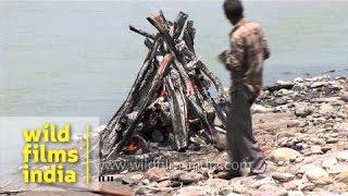 Human corpse burning at Chandi Ghat - Haridwar
