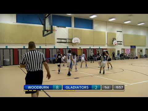 AAU Basketball Tournament (Gold Division)