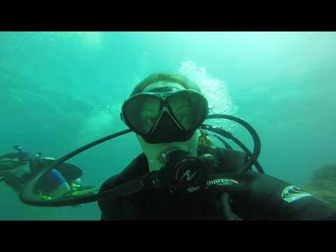 Reef Diving at Key Largo (John Pennekamp Coral Reef State Park)