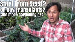 Start Your Garden from Seed or Buy Transplants? & More Garden Q&A(, 2017-02-25T18:00:04.000Z)