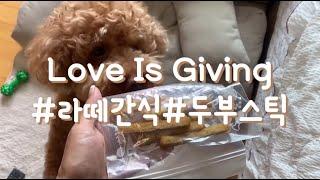 강아지 수제 간식 / 두부 스틱 만들기 / 식품건조기 …