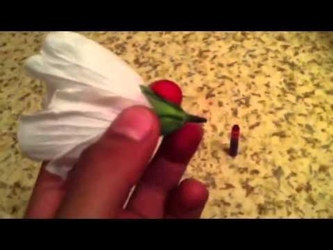 comment changer la couleur d'une fleur - youtube