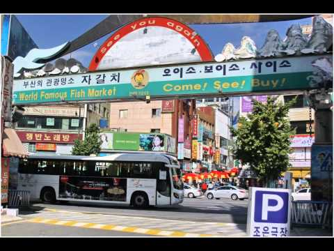 South Korea, Busan.  Fish market & port