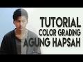 Tutorial Premiere Pro - Color Grading Ala Agung Hapsah