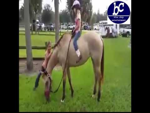 Little girl funny horse riding thumbnail