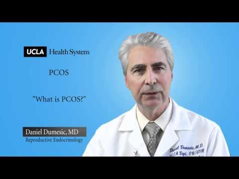 Poliklinika Harni - PCOS i miomi maternice