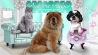 Posh Pet Parlour Commercial