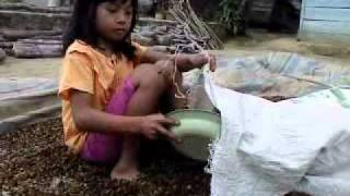 Little girl Kokom collects coffee beans after sun drying 2