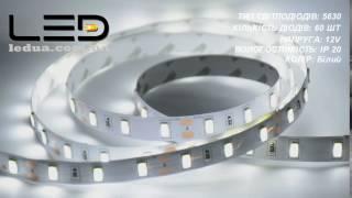 Яркая светодиодная лента(Данная лента выполнена со светодиодов размером 5,6х3 мм. Такие светодиоды обеспечивают идеальное соотношени..., 2016-12-16T08:04:17.000Z)