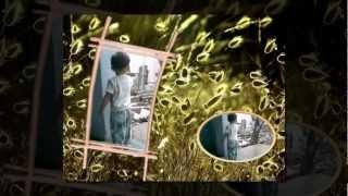Nhac Viet Nam | CA NHẠC PHƯƠNG THẢO | CA NHAC PHUONG THAO