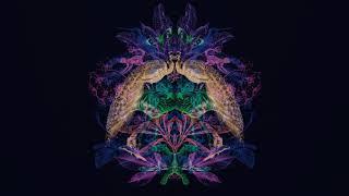 YouTube動画:Steve Bug & Langenberg: Chord Cluster (Cassy Full On Dub Mix)