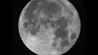 SpaceX plans to send two civilians around the moon