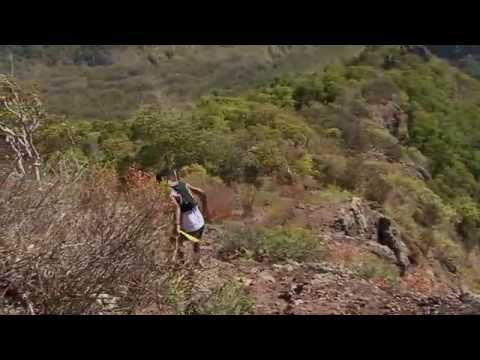 The Dodo Trail 2014